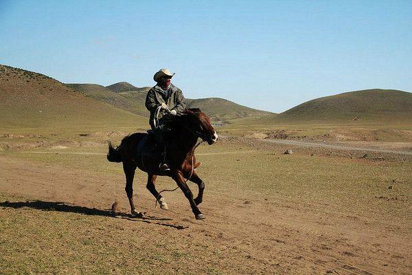 丰宁坝上草原骑马