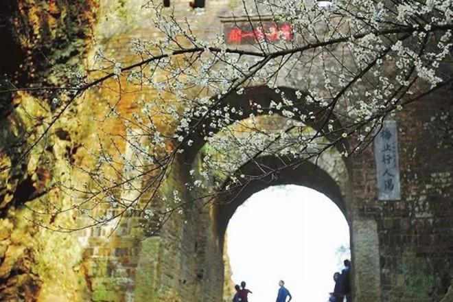 梅关古道6.jpg