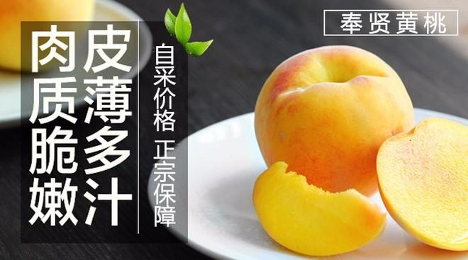好黄桃网——奉贤黄桃销售点