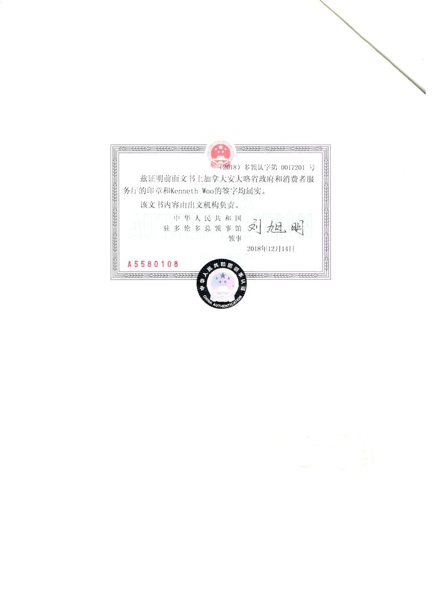 公司融资委托 领事馆认证页.jpg
