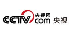 CCTV.com央视网 中央重点新闻网站