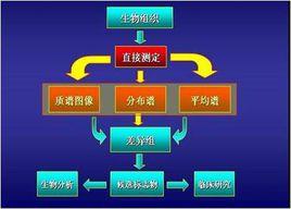 质谱成像技术概念及质谱成像方法