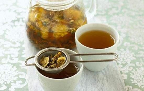 菊花养肝茶