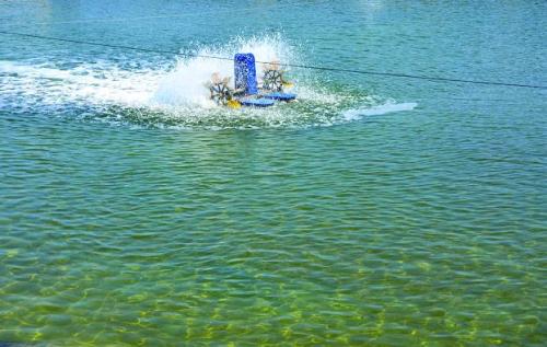 水質.jpg