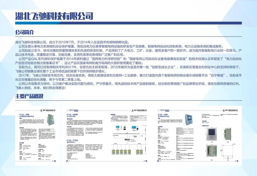 湖北飞驰科技有限公司.jpg