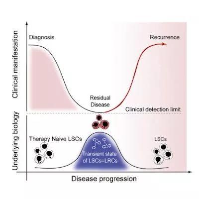近期干细胞领域研究进展4.jpg