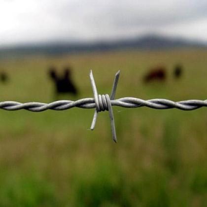 刀片刺绳刺网