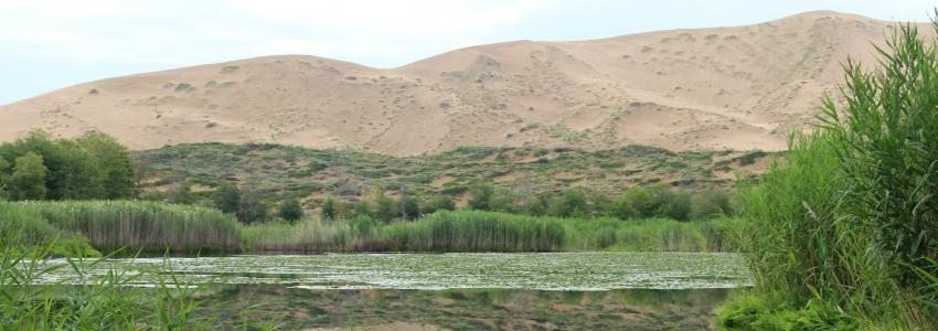 白沙湖.jpg