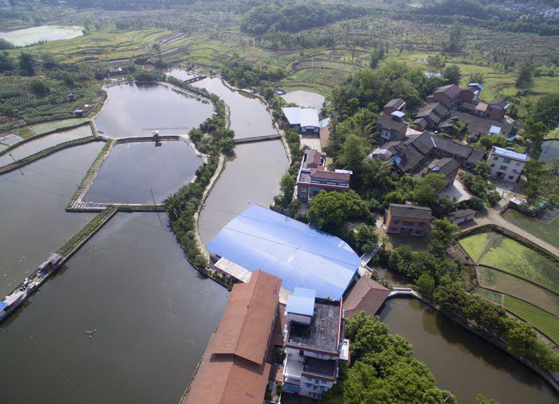 小河源农家乐水景4917.jpg