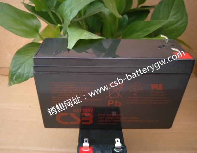 UPS123606.jpg-8-1.jpg