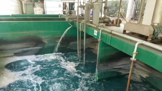 染料废水处理紫外线消毒器