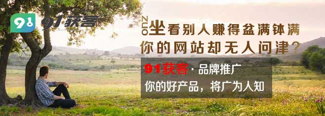 重庆网站推广