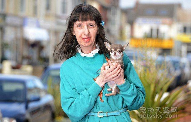 英国最小宠物狗 吉娃娃身高不到8厘米