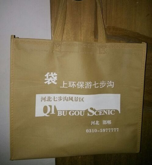 邯郸七步沟旅游宣传袋.jpg