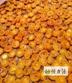 刺梨总三萜为该植物的主要活性成分