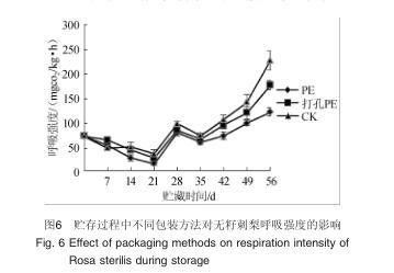 不同包装处理对无籽刺梨VC含量的影响