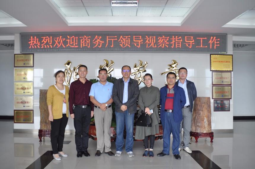 省商務廳領導到集團公司視察指導工作.JPG