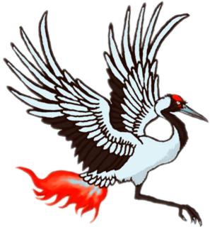 河南毕方网络logo.jpg