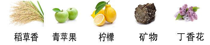 桃金娘白香氣.png