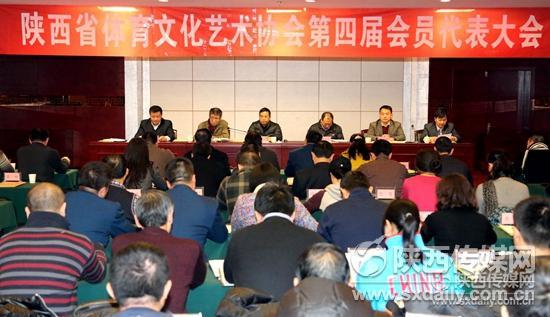 陕西省体育文化艺术协会换届 王玉刚当选协会新任主席