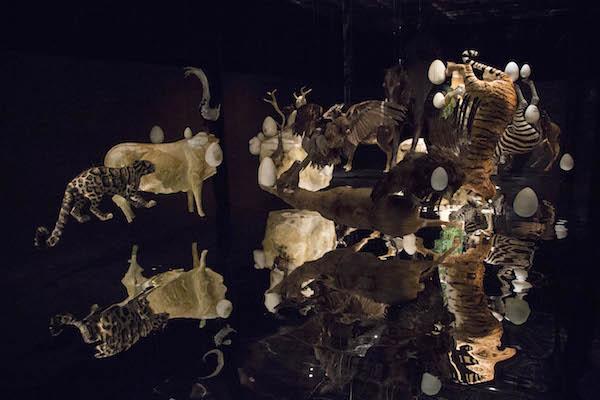 《人造物》邬建安  动物标本,泡沫模型,金箔,纸黏土,镜面膜  尺寸可变  2018   5.JPG
