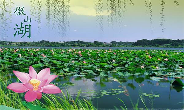 微山湖.jpg