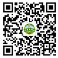 4166829_505498.jpg