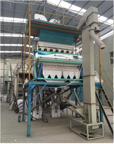 基礎設施-日產10噸彩色CCD稻種色選機.jpg