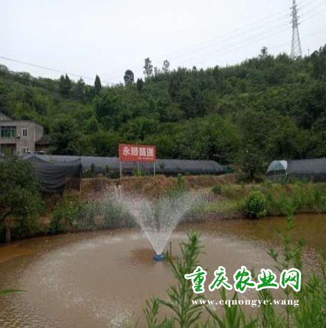 重庆市永川区永顺园林景观工程有限责任公司