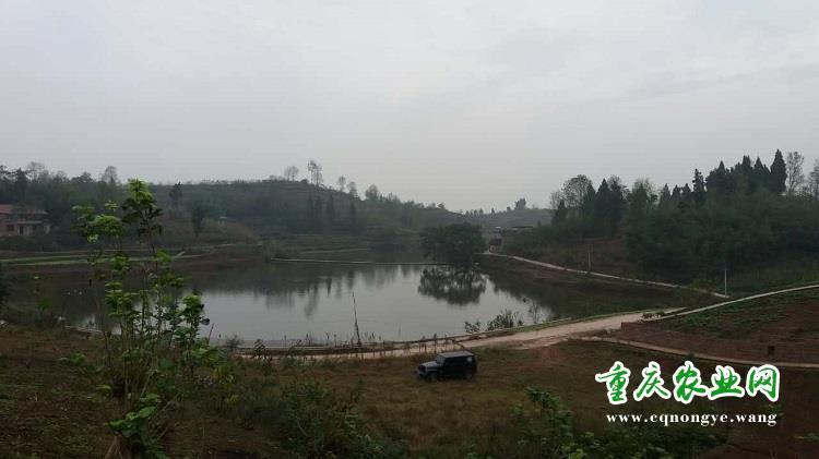 重庆实秉强生态农业发展有限公司