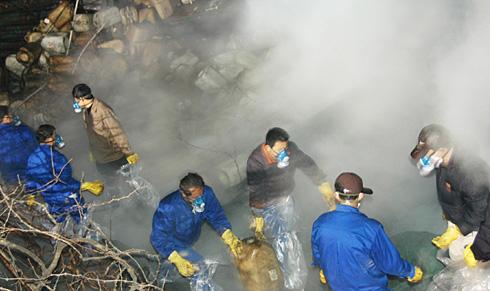 """绍兴上虞区""""汇德隆""""污染环境"""