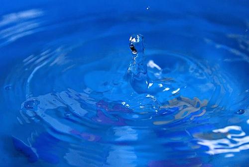 室内放置一盆水