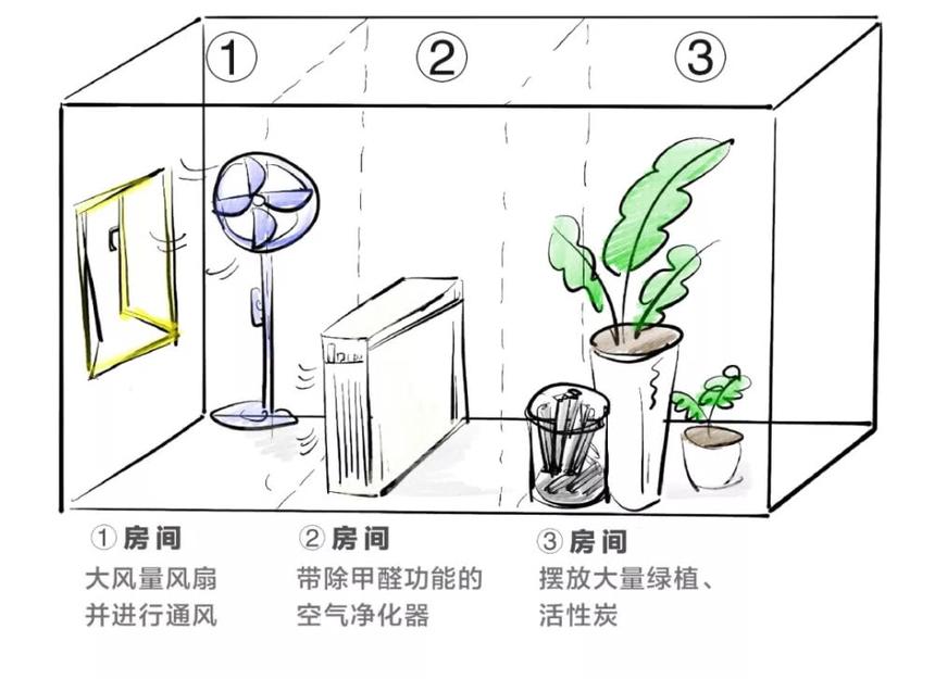附图:三种方式去除甲醛实验
