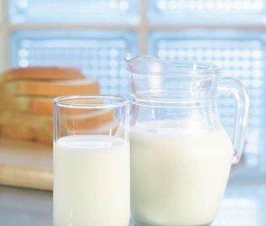 牛初乳不能直接给婴儿当主食
