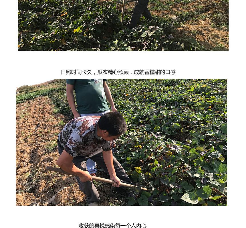 huangxin_05.jpg