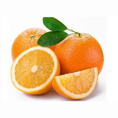 脐橙.jpg