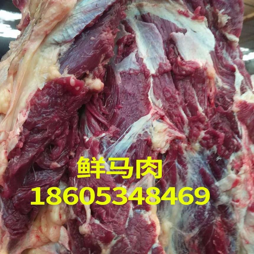 鮮馬肉.jpg