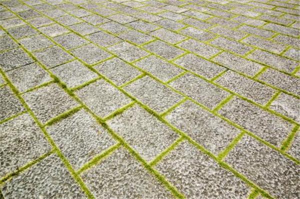 青石板地板的使用優勢有哪些