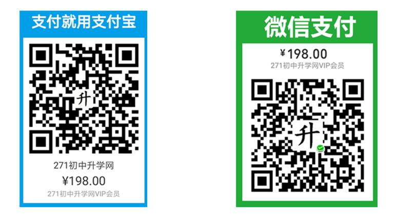 网站VIP会员支付198元.jpg