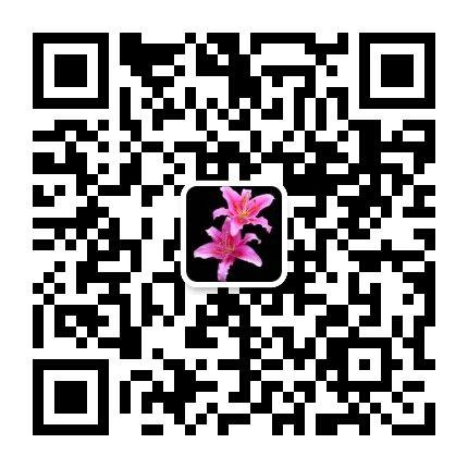 红枫叶二维码.jpg