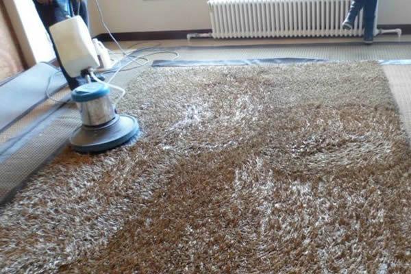 地毯清洗.jpg