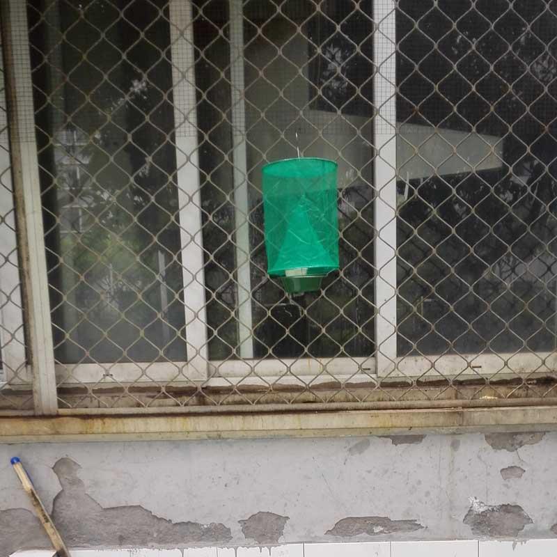 重庆工厂垃圾站蚊虫预防