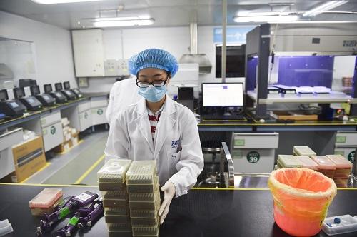在深圳华大基因总部,工作人员在基因测序实验室工作(2016年6月25日摄)。 新华社记者 毛思倩 摄