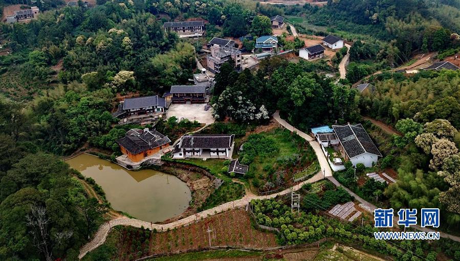 (社会)(3)发展生态产业 助推乡村振兴