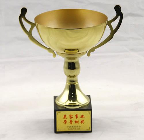 2008年美容事业常青树奖.jpg