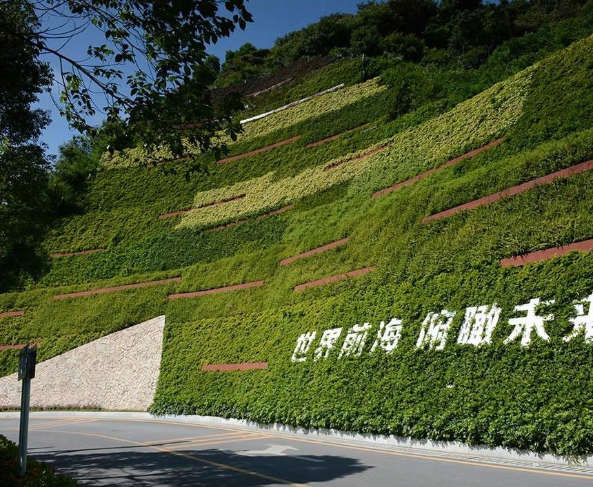 边坡绿化3.jpeg