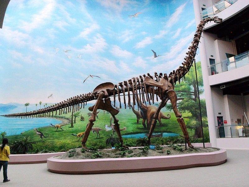 中国古动物馆.jpg