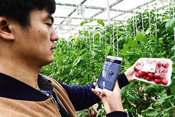 互联网农业1.jpeg