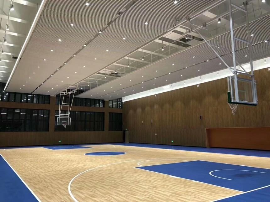 深圳宝龙学校球场铝方通吊顶案例