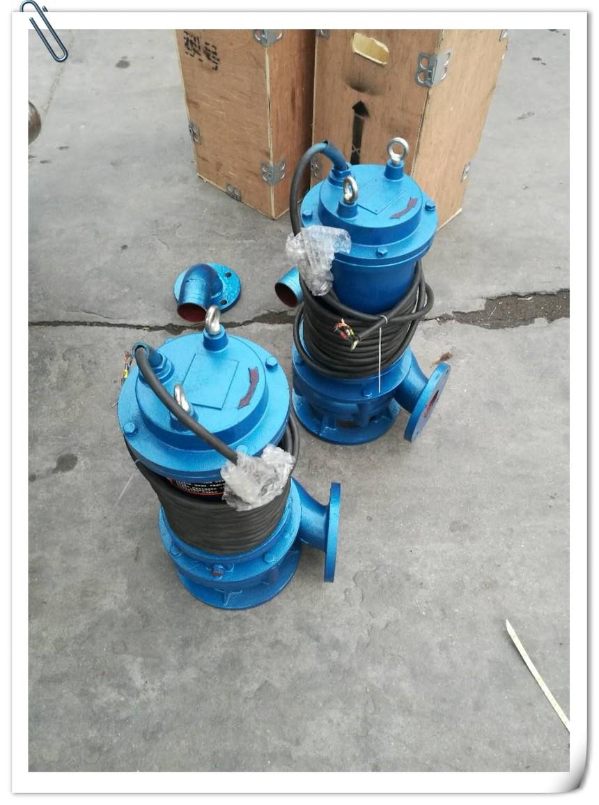 1.5kw潜污泵.jpg